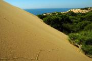 Contrastes en Doñana