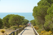 Senderismo en Doñana