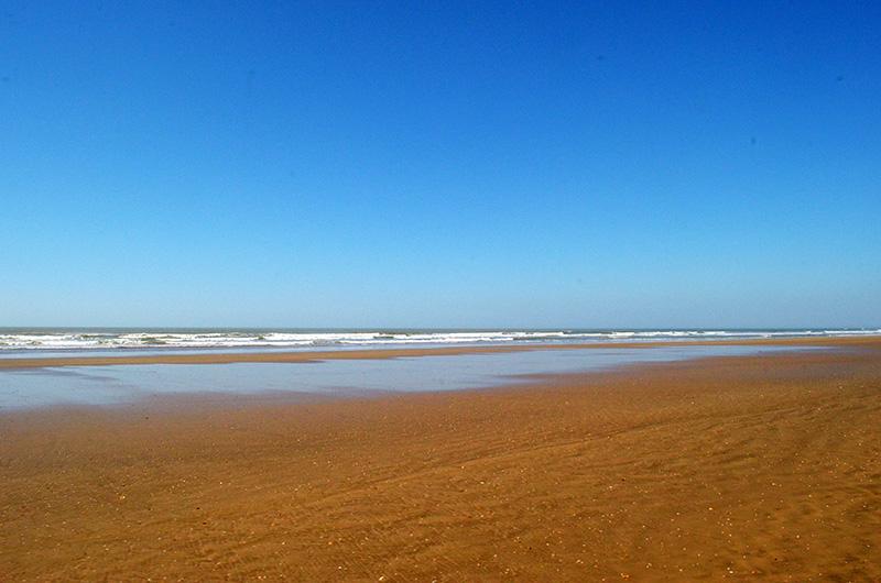 Coast of Doñana National Park