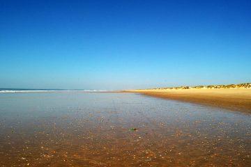 Playa del Parque Nacional Doñana