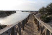 Pasarela al Monumento Natural Punta del Boquerón