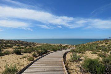 Sendero Cuesta Maneli Doñana