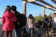 Observación de aves Doñana