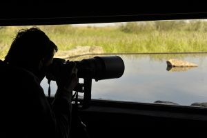 Birdwatching in Andalusia