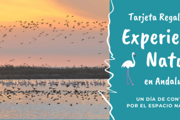 Tarjeta regalo experiencias de naturaleza Andalucía
